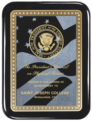 Black Plaque With American Flag Engraving Plate AP48