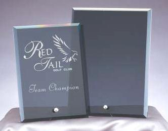 Stand Alone Smoked Glass Award Plaque FM306D