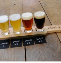 Wood Engraved Beer Sampler Flight Set GC1018