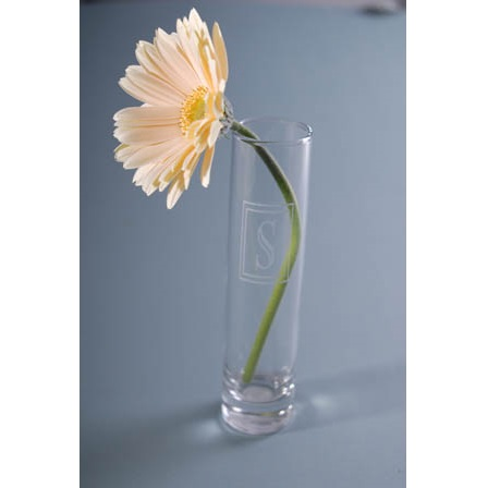 Frost Engraved Tall Glass Bud Vase
