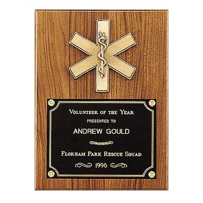 Star Of Life Medical Award Plaque P2930
