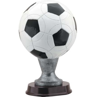 Full Color Soccer Ball Award RX822K