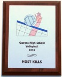 Volleyball Spike Plaque Volleyball Spike Plaque